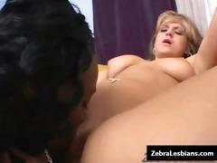 zebra lesbo girls - ebon lesbo honeys fuck deep