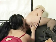 hawt latin honey acquires her snatch licked part5