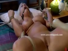 blond delightful babes lesbian sex