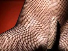 luxury honey posing in pantyhose