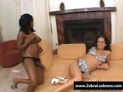 zebra lesbos - hawt ebon lesbian babes fuck with